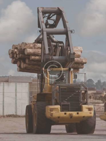 Leading Wood Pellet Factories & Lands